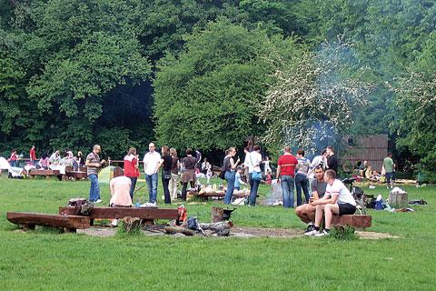 Wandale w parku M�oci�skim