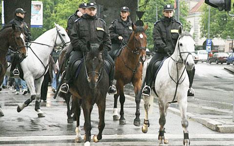 Kto posprz�ta po policyjnych koniach?