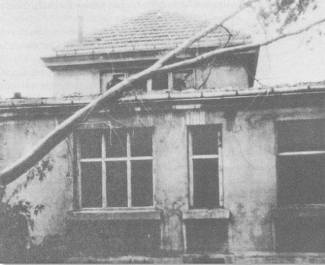 Szpital na Dzia³dowskiej i zaginione klisze z Powstania