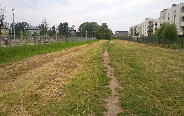 Pierwsza alejka spacerowa na Zielonej Bia³o³êce