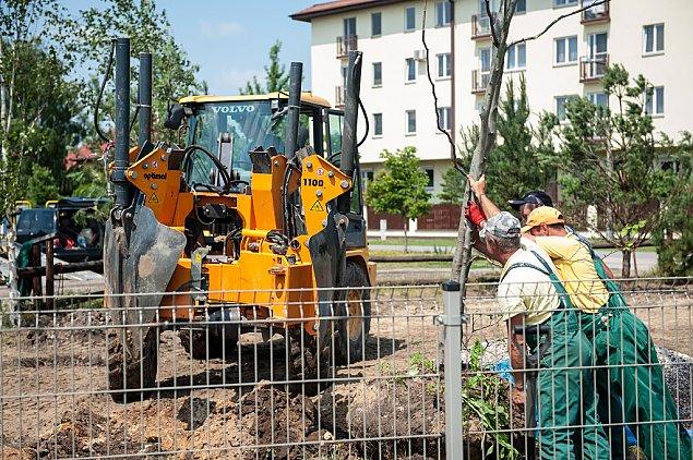 Zacisze dosta³o drzewa w prezencie