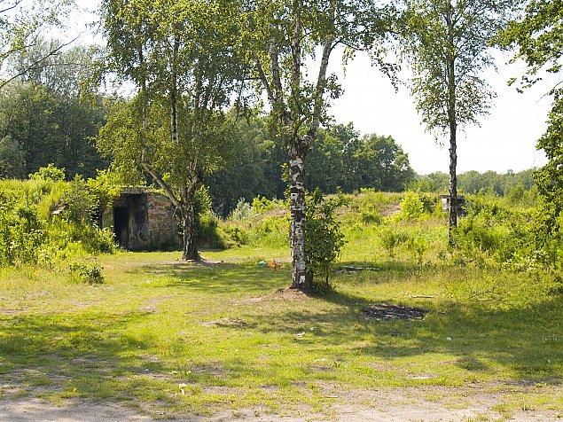 """Oczko wodne i polany piknikowe w Lesie Bemowo. """"Ma to byæ dobro spo³eczne"""""""