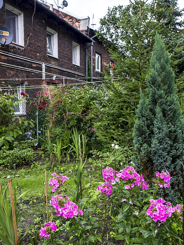 Naj³adniejszy ogródek Warszawy? Na Targówku