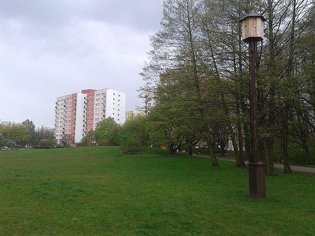 Kawiarnia i plac zabaw w parku Olszyna?