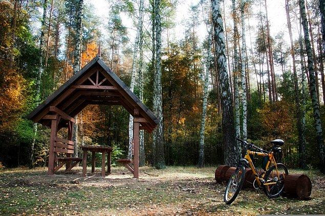 Trasy rowerowe Wawra. Dla amatorów i zawodowców