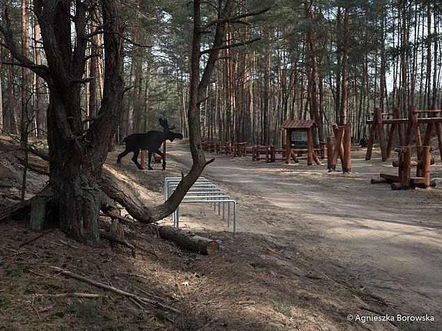 Park le�ny na Olesinie ju� prawie gotowy