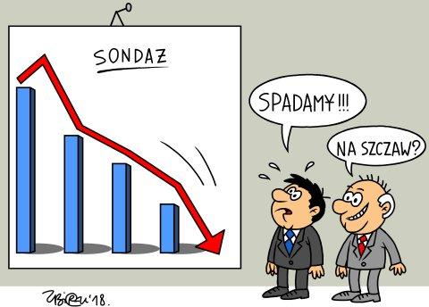 Spadamy
