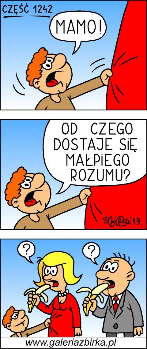 Waciaki, cz. 1242