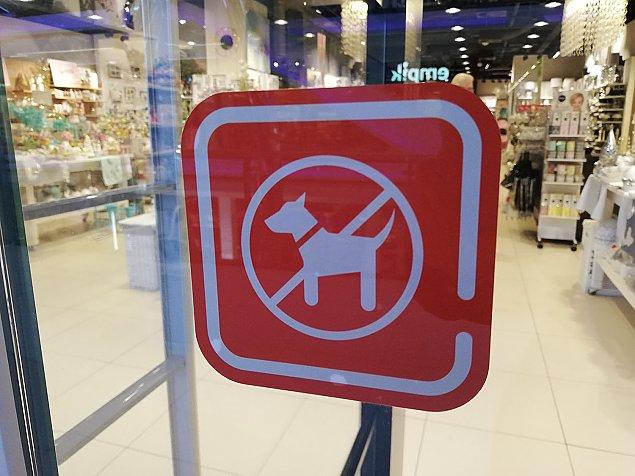 """Z psem do galerii handlowej? """"Zapraszamy, ale..."""""""