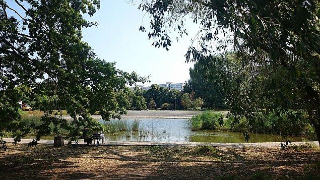 Park Szyma�skiego: kontrowersyjnej inwestycji nie b�dzie