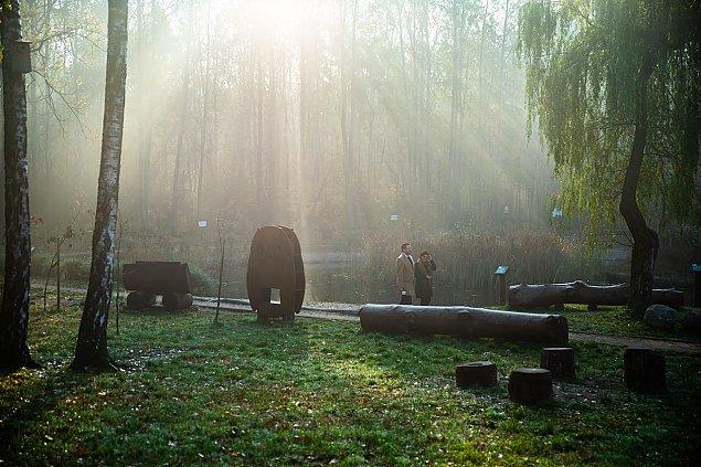 Posadzili drzewa w lesie. Mi�dzynarodowa akcja w Wawrze