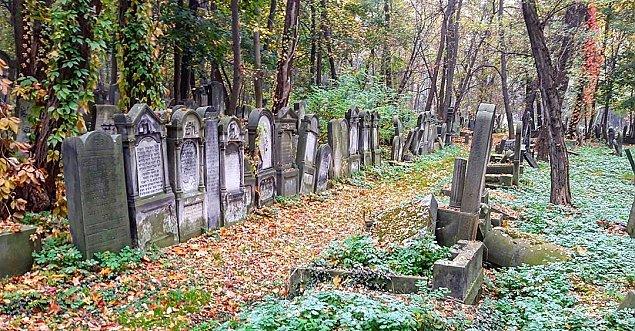 """Wielkie zmiany na """"�ydowskich Pow�zkach"""". Jeden z najwa�niejszych polskich cmentarzy"""