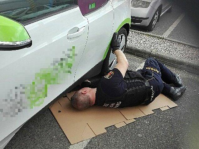 Stra�nicy miejscy uratowali... kota. Maluch skry� si� w samochodzie