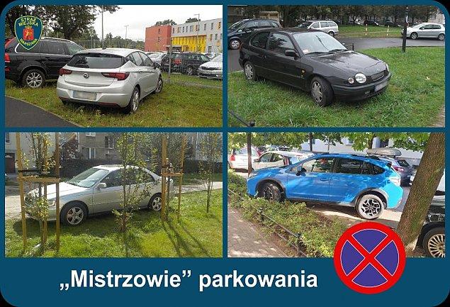 """""""Mistrzowie parkowania"""". Grozi za to 1000 z³ kary"""