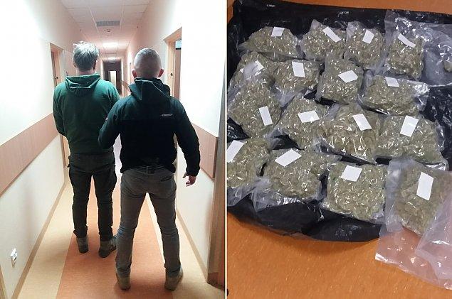 Policja zatrzyma³a narkotykowego dilera w gminie Wieliszew. Mia³ 4 kg marihuany