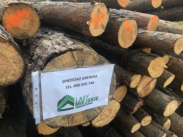 Sterty drewna do kupienia od Lasów Miejskich. To wci±¿ tylko gospodarka le¶na czy ju¿ zarobkowa?