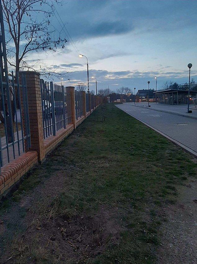Minipark sportowo-rekreacyjny dla dzieci i doros³ych na Zielonej Bia³o³êce?