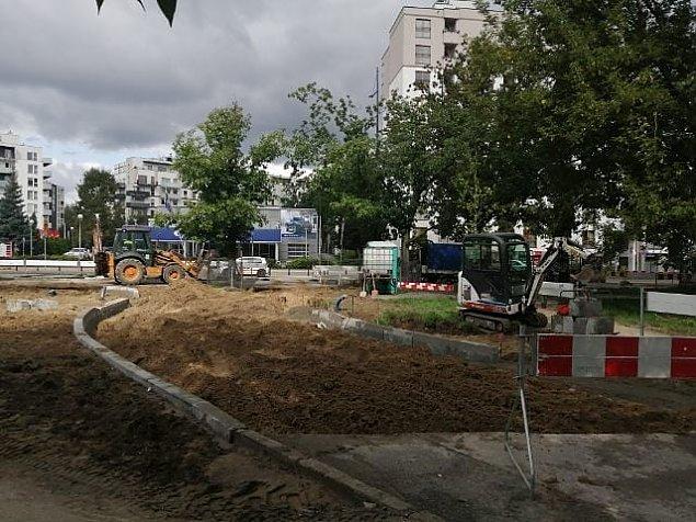 Sokratesa: obiecali 110 nowych drzew, zasadz± 38