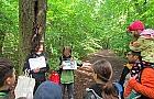 Rodzinne spacery po Lesie Biela�skim - skorzystaj!