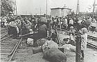 70 lat od wyp�dzenia z Zielonki