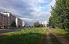 �wiatowida: zielona aleja zamiast ulicy - zbieraj� ju� podpisy