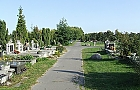 Specjalny autobus na cmentarz P�nocny ju� od soboty