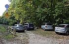 Samochodem do lasu: po�miewisko ze �wi�tego Franciszka