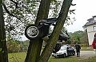 Skuterem zaparkowa� na drzewie