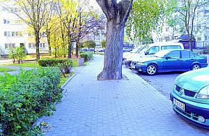Wybrali parking