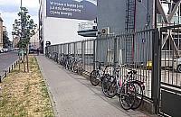 Czysta energia i masa rower�w na Ogrodowej
