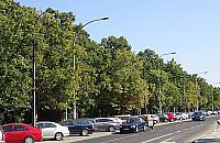 Koniec tandety wzd�u� g��wnej ulicy Bielan