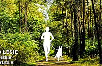 Mi�dzylesie zaprasza na bieg: pana i psa