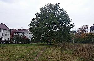 Park Wawrzyszewski - nie ma go, ale jest