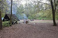 Koniec grillowania w Lesie Bemowskim
