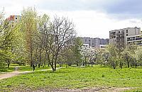 W centrum Odolan wyro�nie zielony labirynt