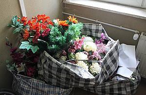 8 lat wiêzienia za kradzie¿... kwiatów?