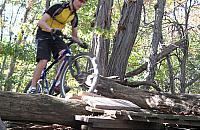 Szlak MTB do korekty? To najlepsza w Polsce trasa rowerowa