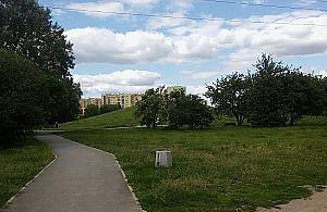 Fontanna i lodowisko w parku Górczewska?