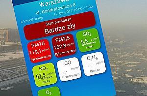 """Smog w Warszawie. """"W Szwecji brakuje na to skali"""""""