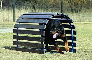 Psi park na Bródnie wkrótce. Najwiêkszy w Warszawie