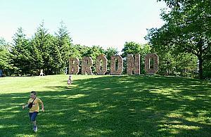 Nowo¶ci w parku Bródnowskim. Grill a mo¿e bieganie?