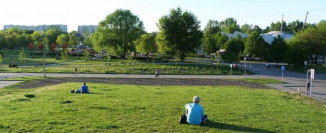 Drzewa i atrakcje w parku Górczewska. Tak g³osowa³y Jelonki i Chrzanów