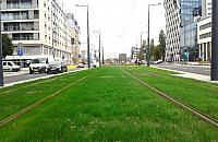 Dwa lata bez tramwaju na Prostej i Skierniewickiej