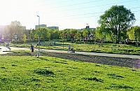 Z³e wie¶ci z parku Górczewska