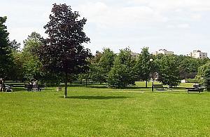 """Jak o¿ywiæ park Bródnowski? """"Pomalujmy ³awki"""""""