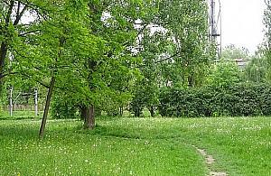Drugi park na Jelonkach. Ruszaj± konsultacje