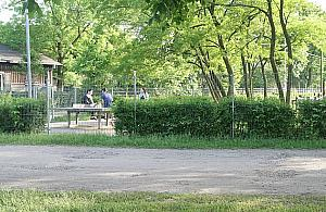 Nowy park dla Targówka. Przy ruchliwej trasie