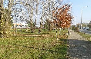 Zielone ¶wiat³o dla Ogrodów Mehoffera