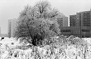 Tarchomin '80. Nieznane fotografie sprzed 30 lat