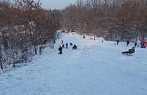 Zimowe centrum rozrywki? Górka Delmacha podbi³a serca dzieci